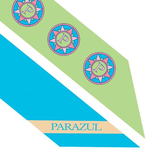 store parazul lime green logo slim scarf